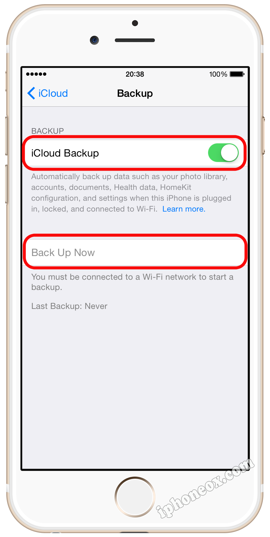 Turn on iCloud Backup and tap Back Up Now